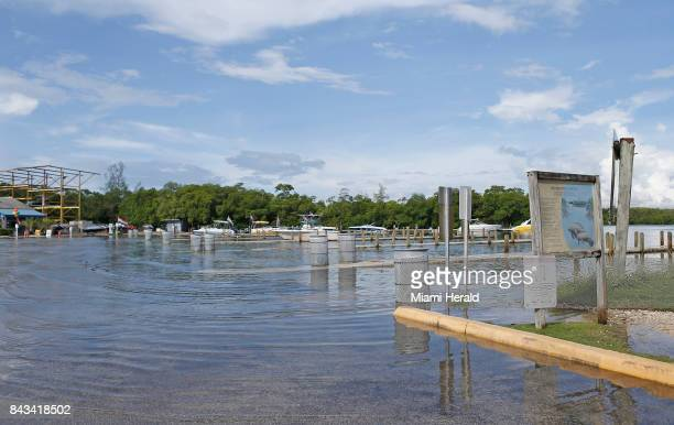 A view of already flooded Haulover Marine Center on Wednesday Sept 6 2017 in Miami Beach Fla