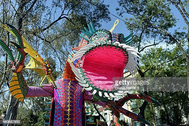 View of an Alebrije brightly colored papiermache sculpture of fantastical creatures during an exhibition at a street in Mexico Ciy on December 19...