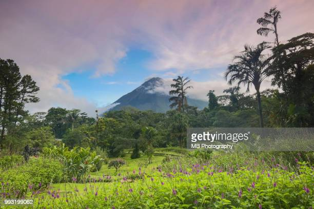 view of arenal volcano, costa rica - costa rica stock-fotos und bilder