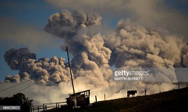 View of ashes spewed by the Cotopaxi volcano in Sangolqui Ecuador on August 23 2015 A dozen towns of central Ecuador including Quito sector suffered...