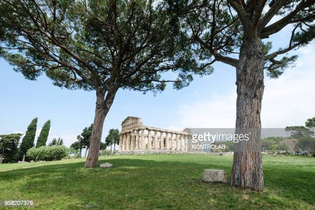 A view of Athena Temple inside archaeological park of Paestum near Salerno southern Italy
