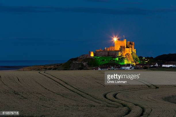 View of Bamburgh Castle at night with a crop of wheat in the foreground.