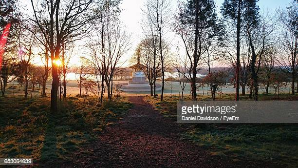 view of bare trees at lakeshore - milton keynes stock pictures, royalty-free photos & images