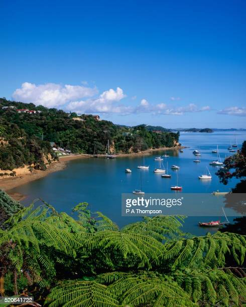 View of Bay of Islands