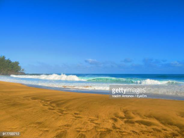 view of beach against blue sky - antonov stock pictures, royalty-free photos & images