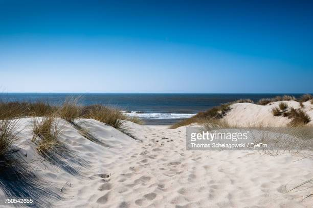 view of beach against clear blue sky - niederlande stock-fotos und bilder