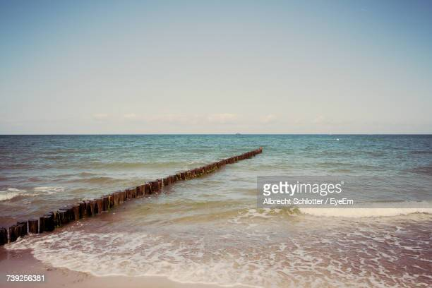 view of beach against clear sky - albrecht schlotter foto e immagini stock