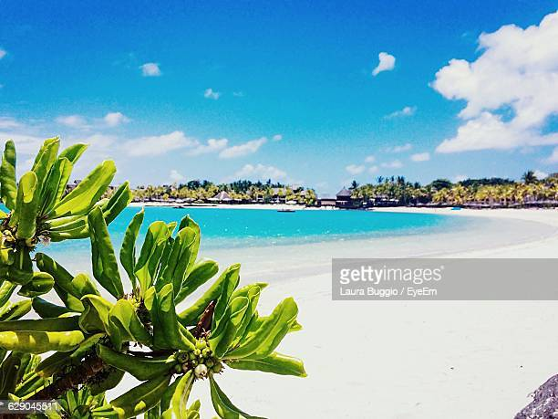 view of beach against sky - insel mauritius stock-fotos und bilder