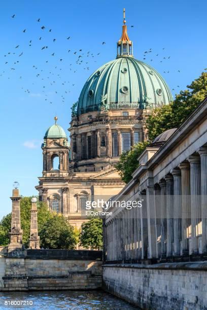 view of berliner dom, berlin, germany - ベルリン大聖堂 ストックフォトと画像
