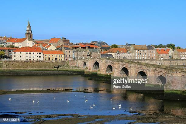 berwick upon tweed single personals If you're looking for lesbian singles in berwick-upon-tweed, this dating website if for you.