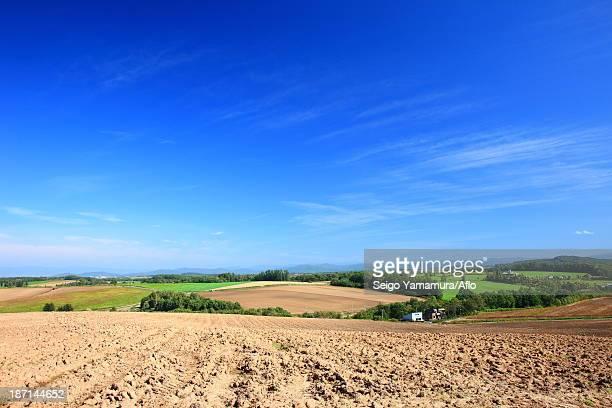 View of Biei, Hokkaido