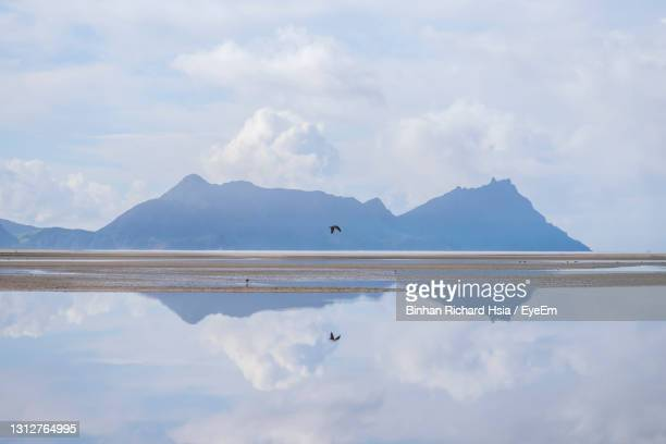 view of birds flying over lake against cloudy sky - whangarei heads stock pictures, royalty-free photos & images