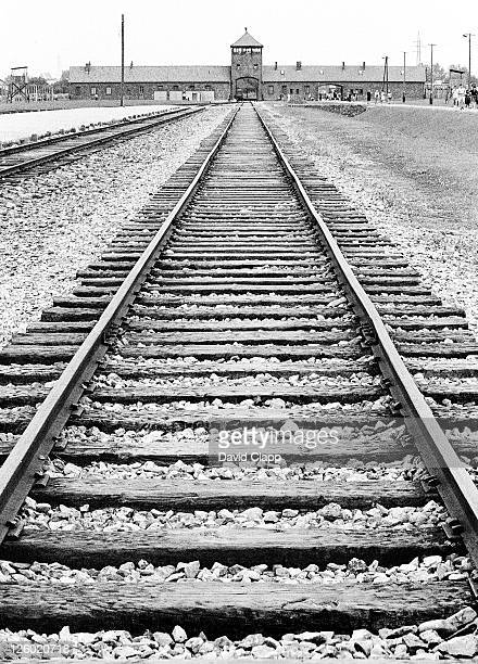 view of birkenau entrance and railway line that brought prisoners in, auschwitz, poland - birkenau stock pictures, royalty-free photos & images