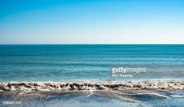 view of black sand beach in napier, hawkes bay region, north island, new zealand. - tide stock pictures, royalty-free photos & images