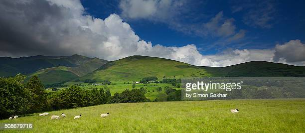 a view of blencathra in the lake district - blencathra stock photos and pictures