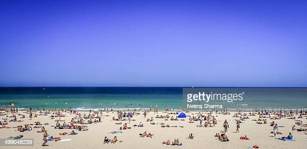 CONTENT] View of Bondi Beach at Sydney