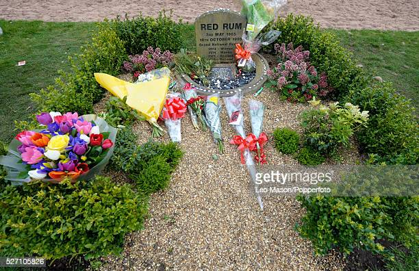 View of bouquets of flowers laid at the memorial site for racehorse Red Rum during the 2010 John Smiths Grand National Meeting at Aintree racecourse...