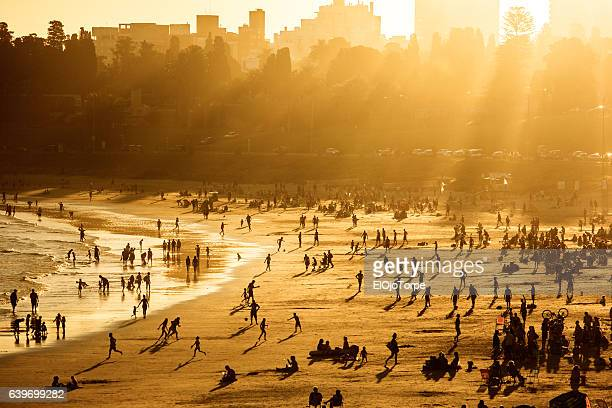 view of buceo beach at sunset, montevideo, uruguay - montevideo stock pictures, royalty-free photos & images