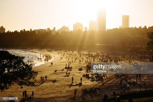 view of buceo beach in summer, montevideo city, uruguay - montevideo stock pictures, royalty-free photos & images