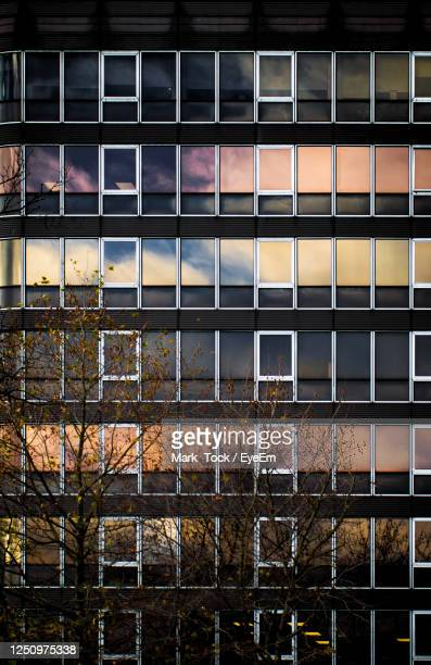 view of building at night - nottingham stock pictures, royalty-free photos & images