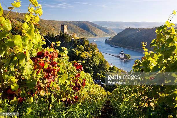 View of Burg Pfalzgrafenstein and Rhine River