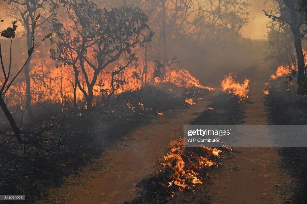 BRAZIL-DROUGHT-FIRE : News Photo