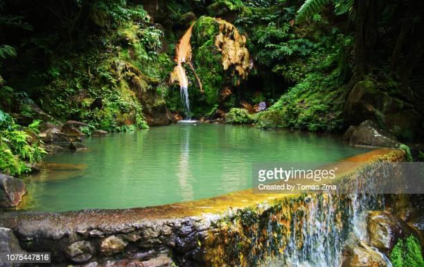 view of caldeira velha hot springs, são miguel - azores fotografías e imágenes de stock