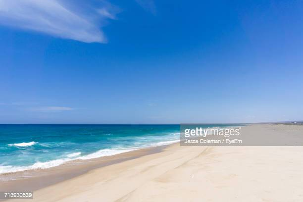 view of calm beach against blue sky - jesse coleman stock pictures, royalty-free photos & images