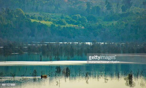 view of calm lake against trees - muhamad nasrun stock pictures, royalty-free photos & images