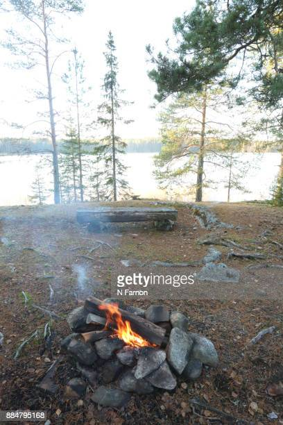 View of camp fire & log bench overlooking the lake.