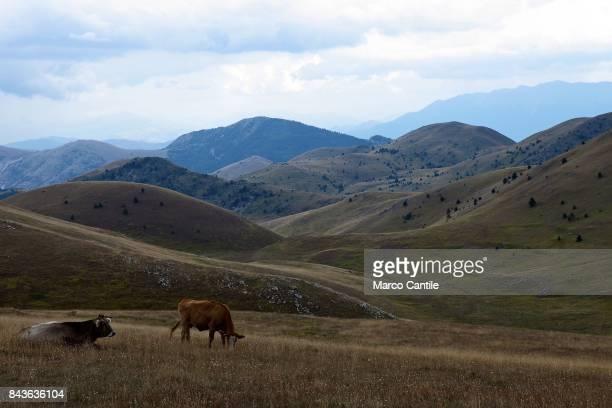 View of Campo Imperatore, in the Abruzzo Laga mountains of Gran Sasso.