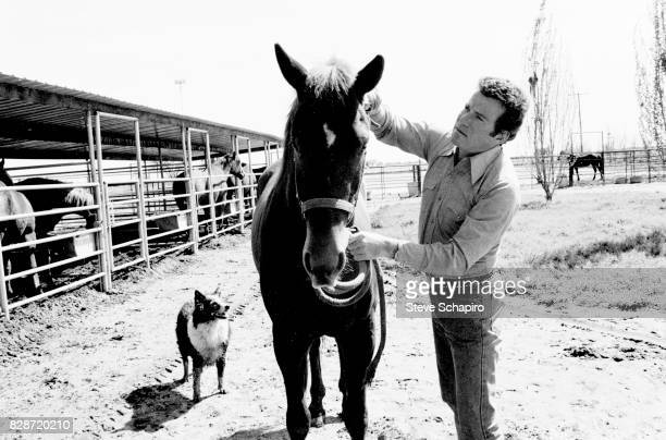 View of Canadian actor William Shatner with a horse on his ranch Three Rivers California 1982