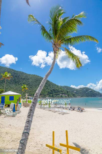 view of cane garden bay beach, tortola, british virgin islands, west indies, caribbean, central america - cane garden bay stock pictures, royalty-free photos & images