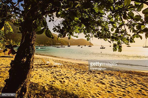 view of cane garden bay - cane garden bay stock pictures, royalty-free photos & images