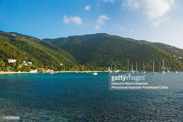 view of cane garden bay, tortola, british virgin islands - cane garden bay stock pictures, royalty-free photos & images