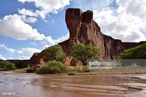 View of Canyon De Chelly outside Chinle, Arizona on May, 19 2015. AFP PHOTO/ MLADEN ANTONOV