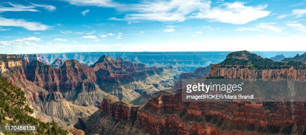 View of canyon landscape from Bright Angel Viewpoint, North Rim, Grand Canyon National Park, Arizona, USA