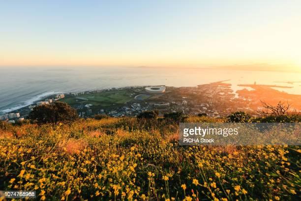 view of cape town seaside - província do cabo oeste - fotografias e filmes do acervo