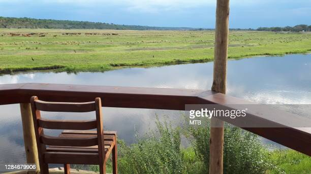 view of caprivi river in namibia - zambezi river stock pictures, royalty-free photos & images