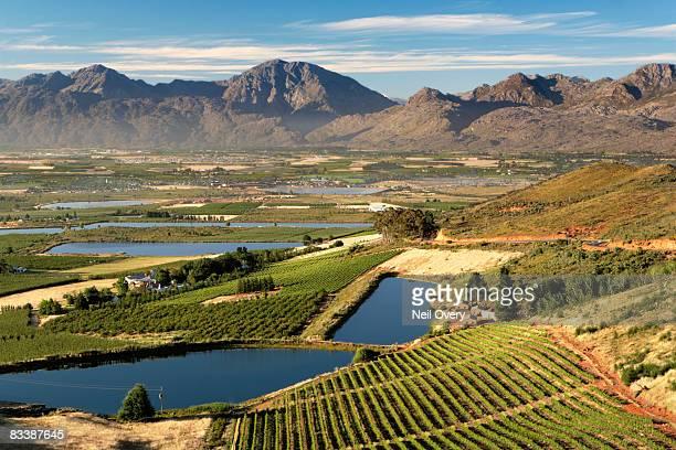 view of ceres valley at dawn, ceres, western cape province, south africa - westliche kapprovinz stock-fotos und bilder