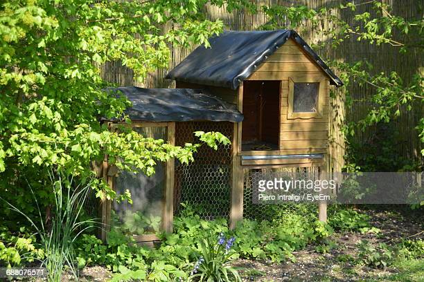 view of chicken coop - chicken coop stock pictures, royalty-free photos & images