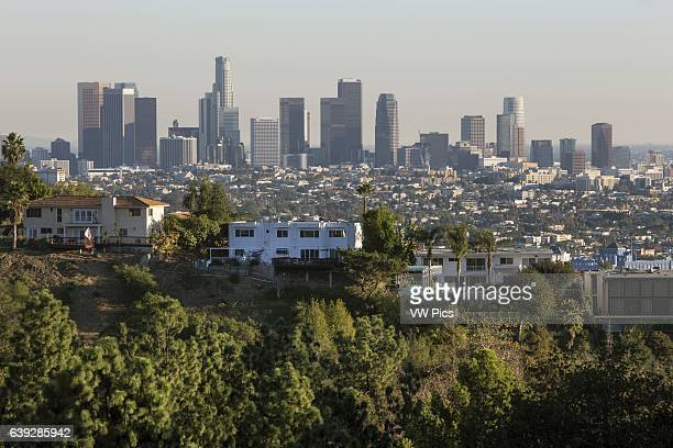 View of City Skyline from Griffith Park Los Angeles California USA