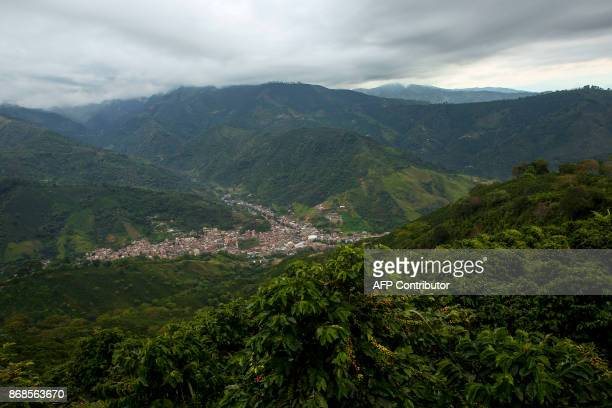 View of Ciudad Bolivar seen from a coffee plantation in a mountainous area of Antioquia department Colombia on October 19 2017 October is the peak of...