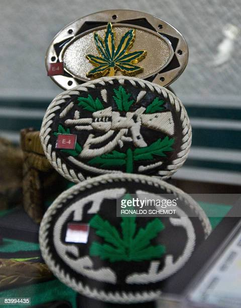 View of clasps with images of marijuana leaves are on display at the Museum of Drugs of Mexico City on December 3 2008 Goldincrusted weapons children...