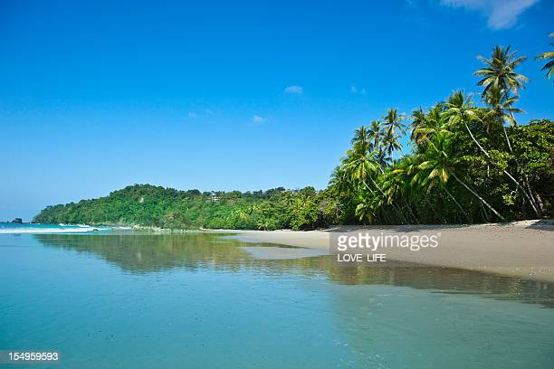 A view of clear blue skies at a Costa Rican Beach