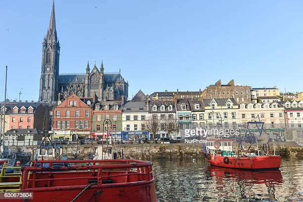 A view of Cobh waterfront with fishing boats and St Colman's Cathedral On Thursday 29 December 2016 in Cobh Cork Ireland