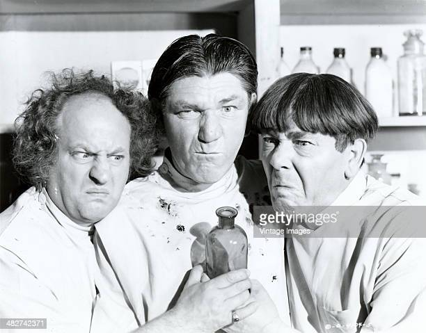 View of comedy team the Three Stooges in the short film 'All Gummed Up' 1947 Pictured are from left actors Larry Fine and brothers Shemp and Moe...