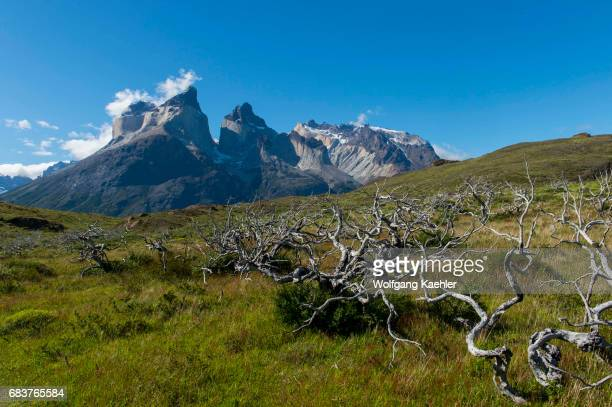 View of Cuernos del Paine mountains from Salto Grande trail in Torres del Paine National Park in southern Chile