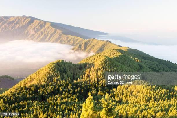 """view of """"cumbre nueva"""" in la palma island (canary islands) - dähncke fotografías e imágenes de stock"""