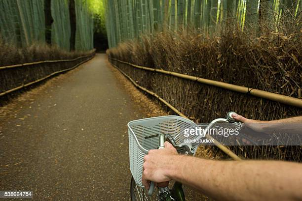 POV view of cycling in a bamboo forest